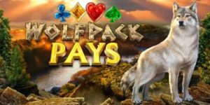 wolfpack-pays
