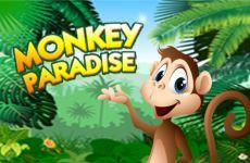 monkey-paradise