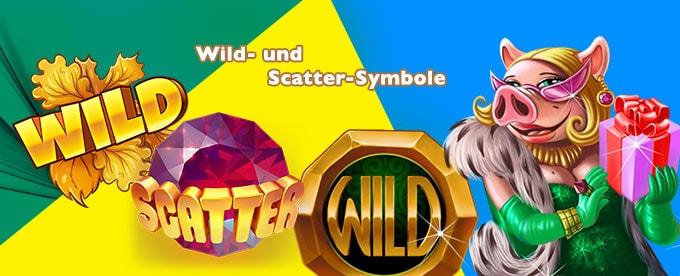 Wild und Scatter Symbole